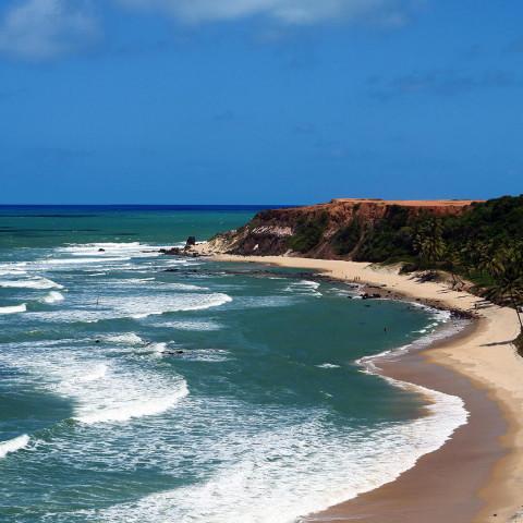 Imagem representativa: Baia dos Golfinhos | Conheça Agora | Dica de turismo na Praia de Pipa